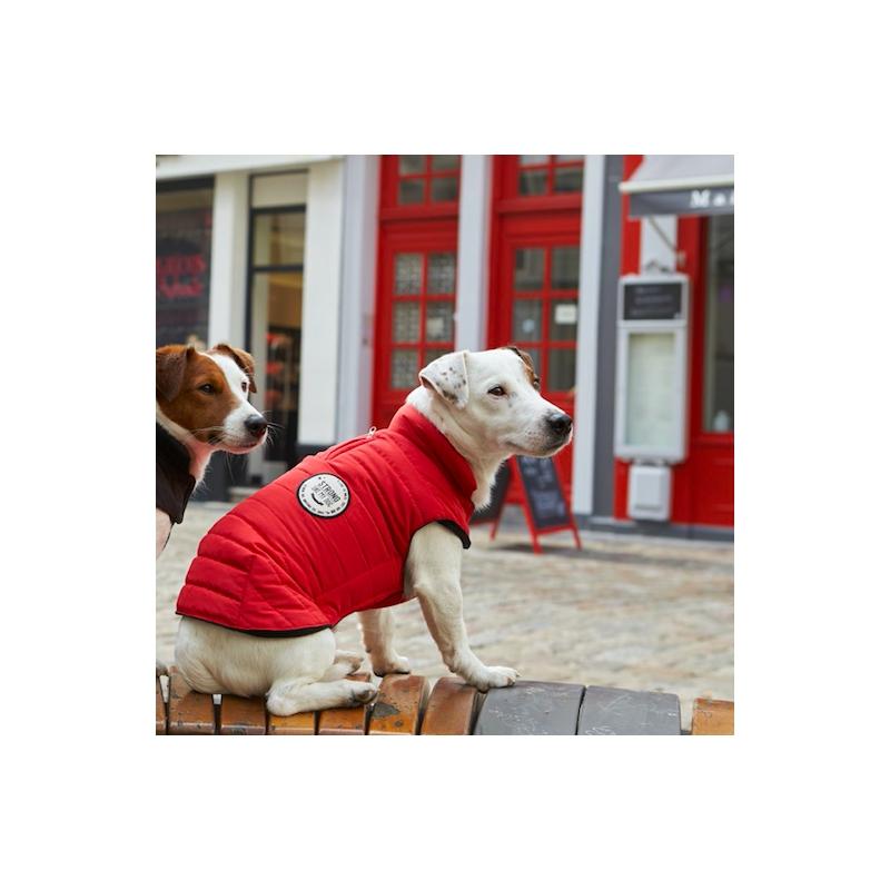 abrigo-strong-rojo (1)